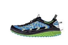 chaussure de course salomon